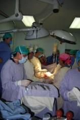 donacion de órganos (5)