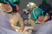 donacion de órganos (7)