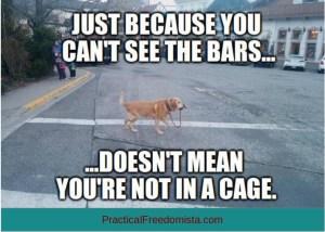 bars3