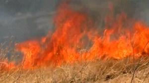 Grass Fire, Vegetation Fire, Flames, Wildfire, Generic