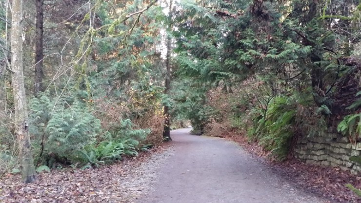 Ravenna Park trail in Seattle, Wa