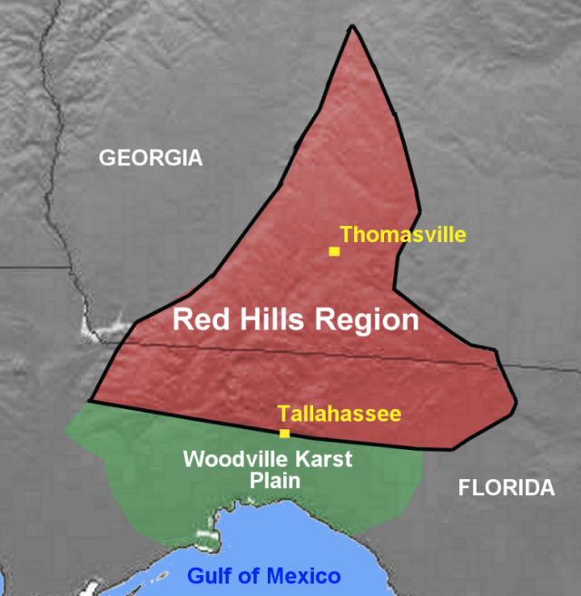 In order to arrive in Tallahassee from any direction, you would have had to travel up a hill