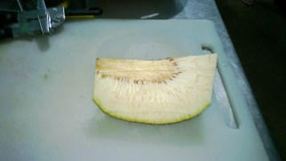 The Bread Fruit cross section.