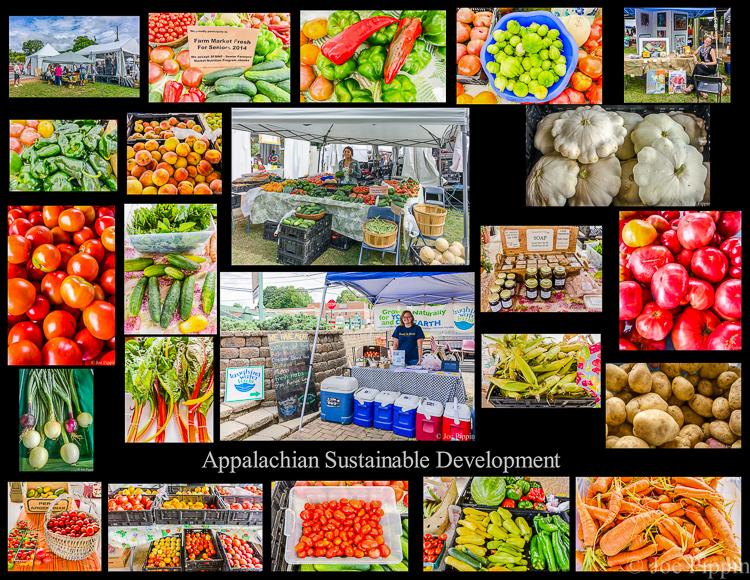 ASD Abingdon Farmers Market Collage