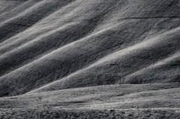 Le Crete - Detail III