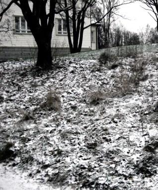 vor dem Haus © Kruth 2008
