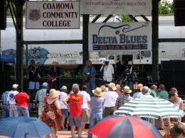 Clarksdale Sunflower Festival 2008