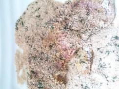 Kalbsschnitzel im Paniermehl mit Rosmarin wenden (3)