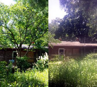 Joes Tree Service, Springfield, MO tree removal
