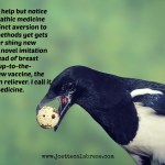 Magpie Medicine: Drugs for Fever, Drugs for Pain, Drugs for Anything