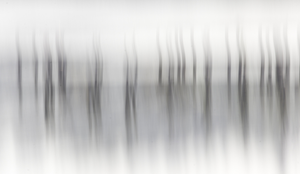 Abstract, B&W, Pylons, Orcas Island