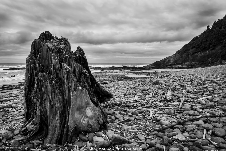 Oregon_Coast-2015_02_18-6-1L
