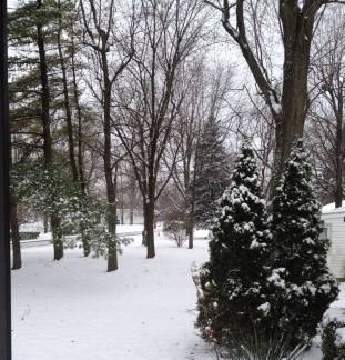 one of my snowy views -- i never tire of it