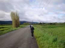 Wonderful quiet country roads. The perfect setting for any long run.