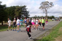 The largest number of participants is surely in the 10km walk?