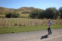 Classic rural New Zealand.