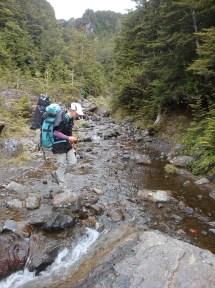 Crossing the stream just below Waitonga Falls.