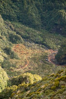 The red water of the Kokowai Stream.