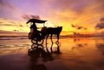 Parangtritis Beach in Jogja Indonesia