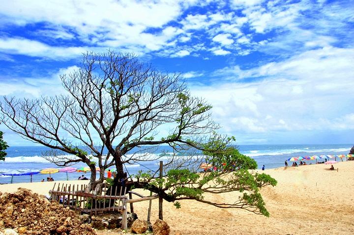 Pok Tunggal Beach in Yogyakarta