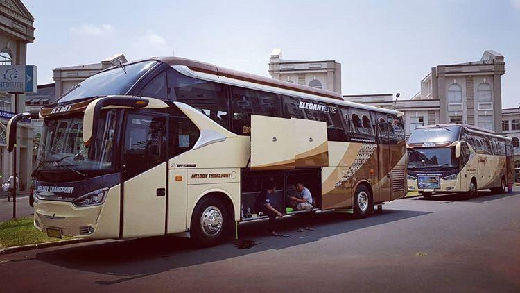 Bus Wisata, sumber ig melodytransport