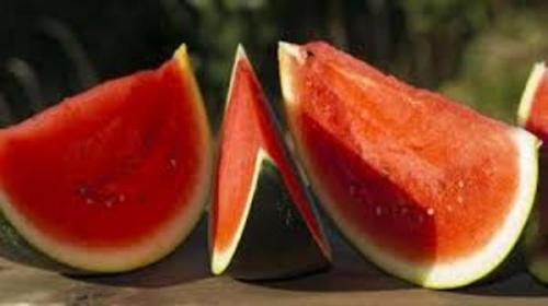 Semangka1