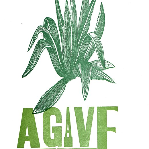 Agave Print Edition by Johanna Mueller