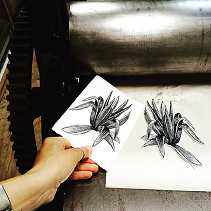 Agave Print Process Image by Johanna Mueller