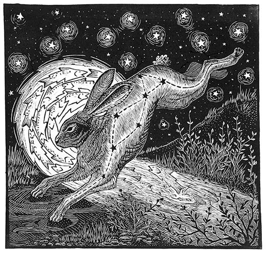 Midnight Rabbit Print Edition by Johanna Mueller