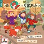 Cover Fuchsbande 21