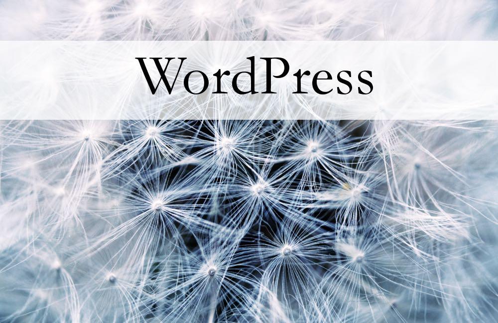 Jo Harrison WordPress