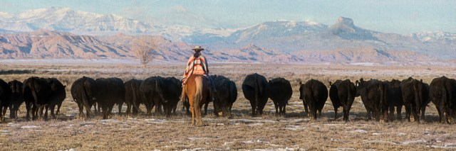 Riding_Herd