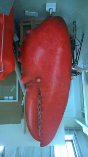 Painted lobster claws