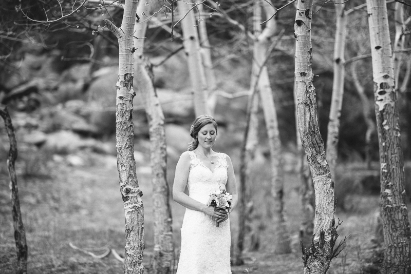 Best of 2013 Denver Weddings-017