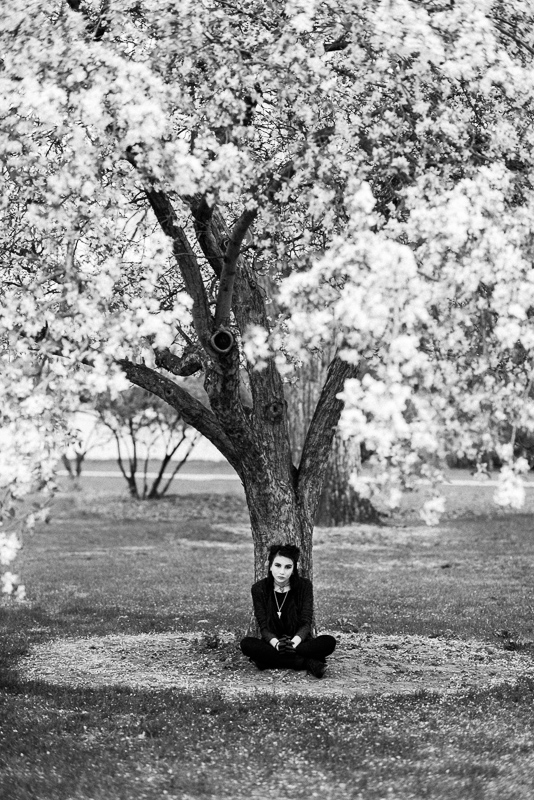 denver senior portraits black and white flower tree