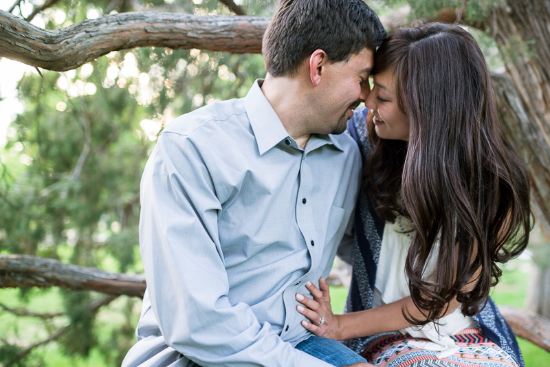 Denver Engagement Photographer couple sitting in tree