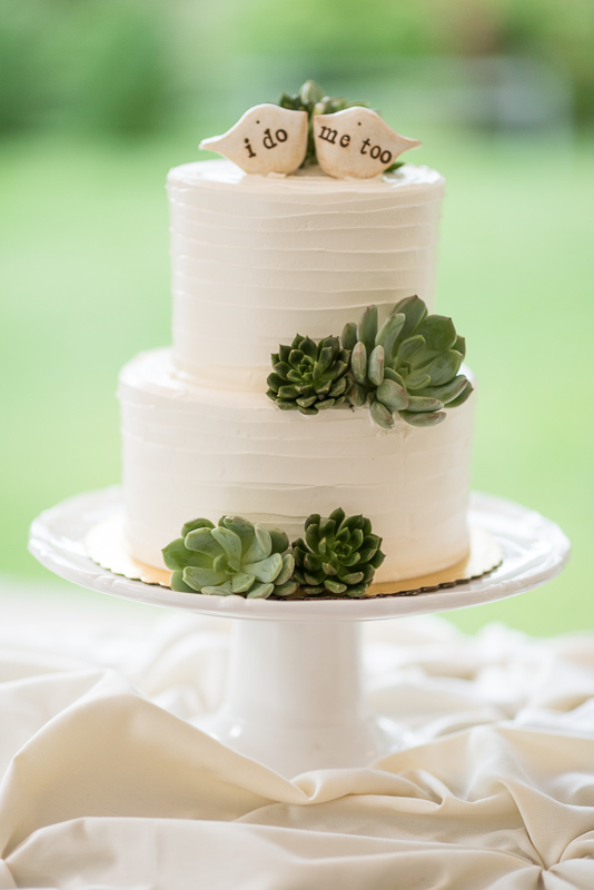 Boulder Wedding Photography cake