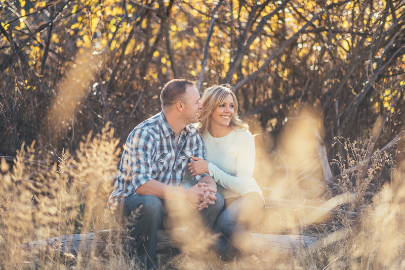 Denver Engagement Photographer couple sitting on log
