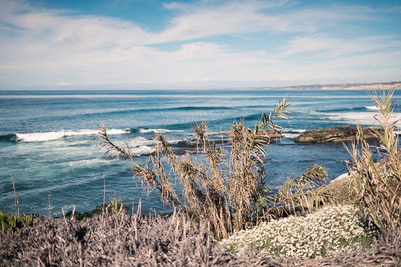 la joya beach