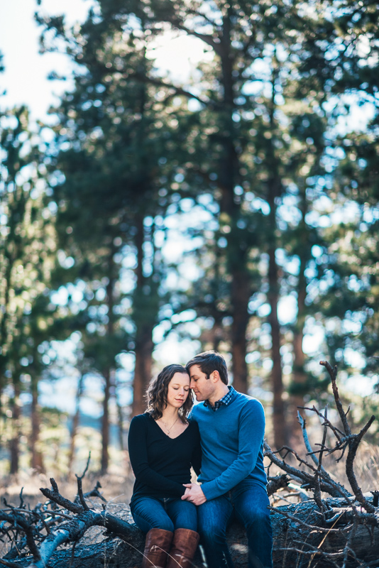 Evergreen Engagement Photography forest