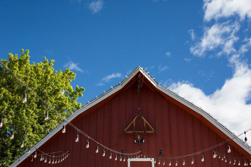 chatfield botanic gardens wedding photography red barn
