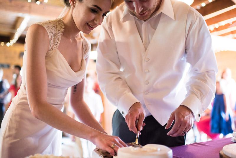 chatfield botanic gardens wedding photography cutting cake