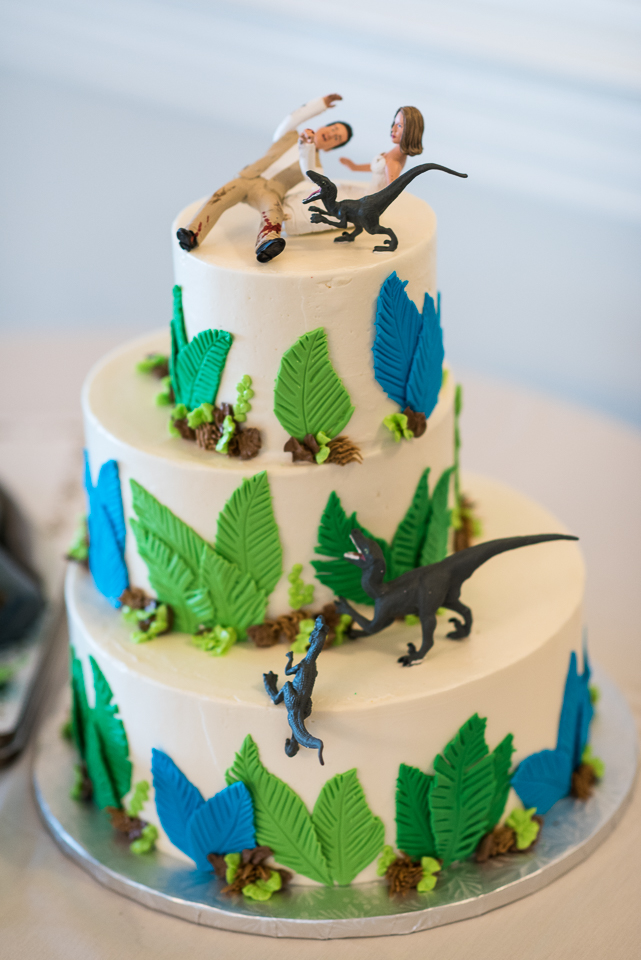 morrison willow ridge manor wedding photographer dinosaur cake