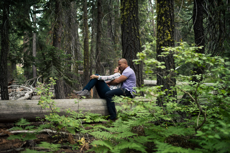 Tahoe Engagement Photography sitting in trees