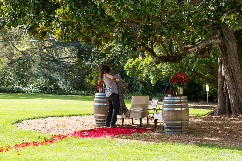 Sonoma Chateau St Jean Vineyard couple proposal