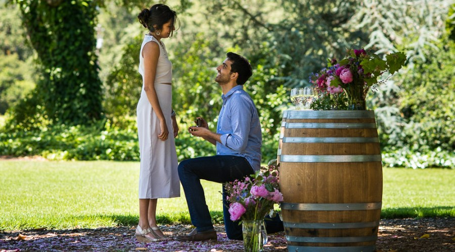 Sonoma Vineyard Proposal Photography Chateau St Jean engagement ring