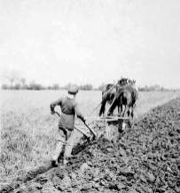 A farmer plows his field using horses. Courtesy Google Images.