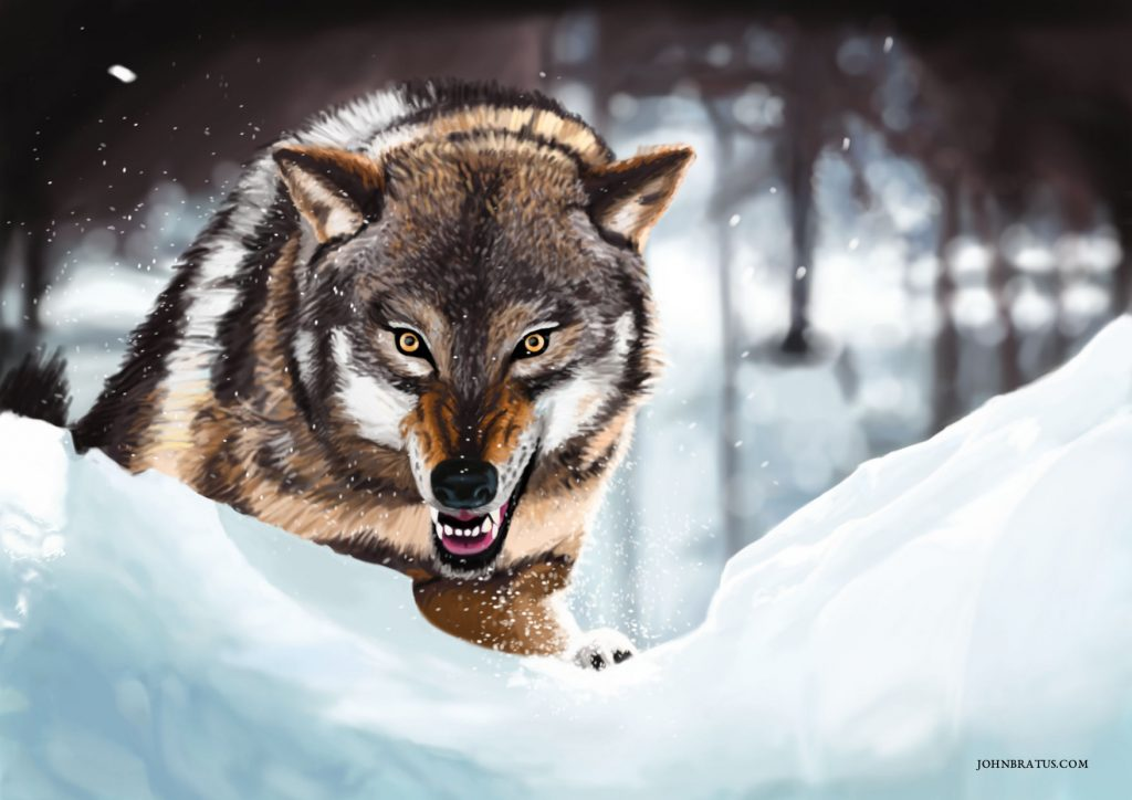 Digital painting of an angry wolf running through snowy expanses