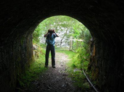 Moo Tunnel