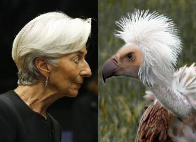 christine-lagarde-cockatoo